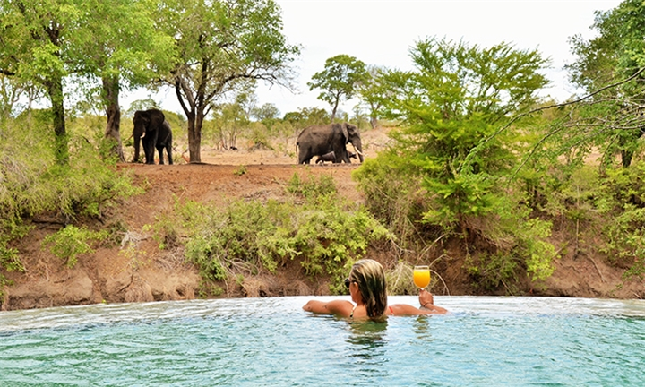 Mpumalanga: 1, 2 or 3-Night Anytime Stay for Two Including Meals, Selected Drinks & 2 x Game Drives Daily at Imbali Safari Lodge