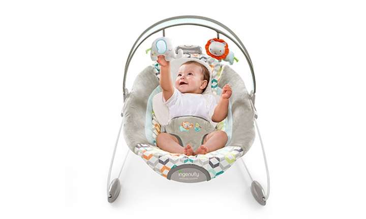 Ingenuity Smartbounce Automatic Bouncer for R1099