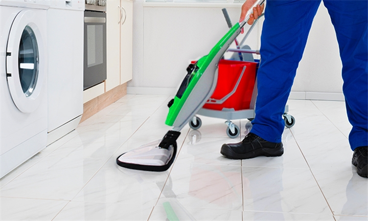 10 In One Steam Mop for R879