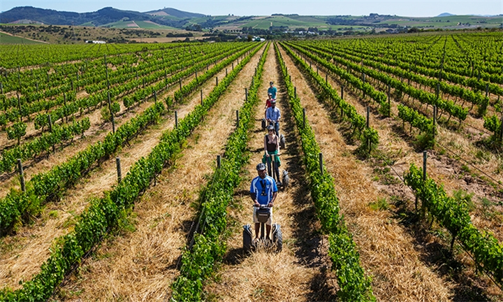1-Hour Spier Farm Segway Tour for Two with Segway Vineyard Tours