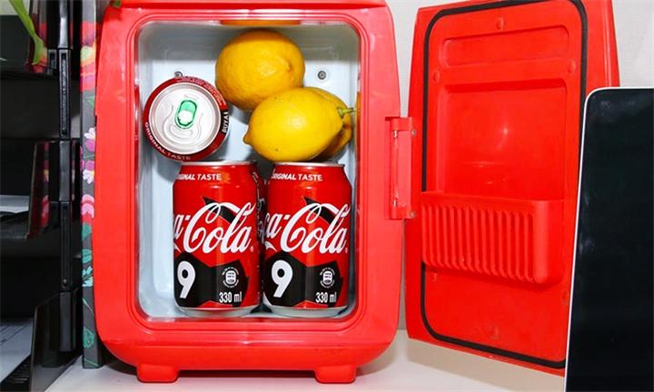 Travel Buddy 6L Desk/Car Fridge & Warmer Unit for R599