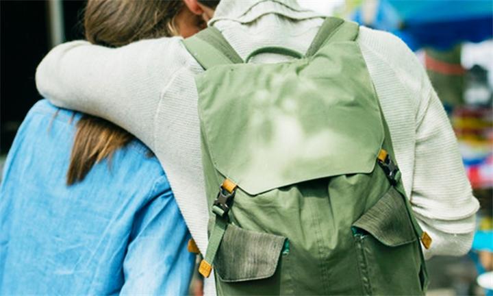 CaseLogic LoDo Large Backpack for R1099
