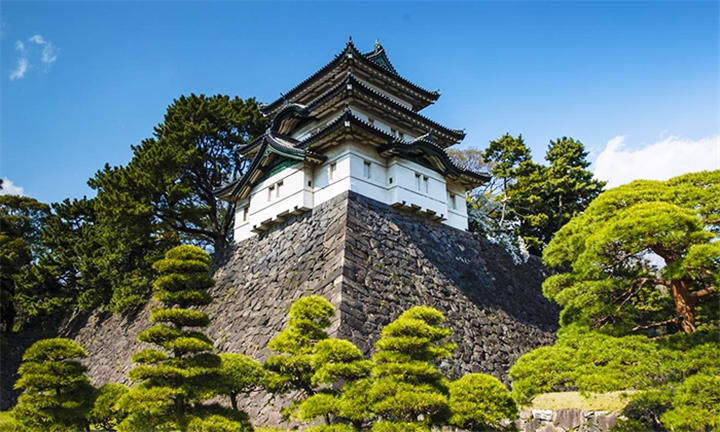 Japan : 6-Day Tokyo to Kyoto Temple Tour