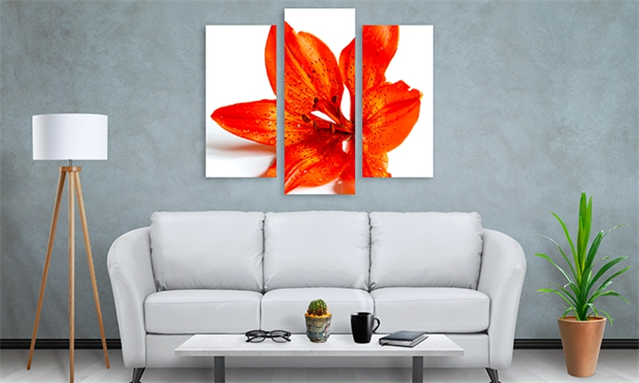 Canvas Prints in Assorted Sizes – A5, A4, A3, A2 at Mojo Printing