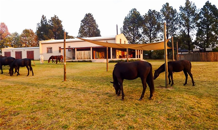 Free State: 2-Night Midweek Self-Catering Stay for up to Eight at Barnfires Farmhouse