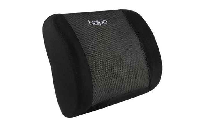 Naipo Memory Foam Lumbar Support Cushion for R429