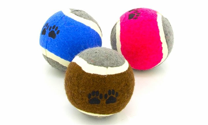 3 Piece Fun Play Balls for Pets for R69