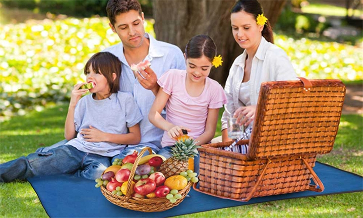 Picnic Blanket with Carry Bag for R149