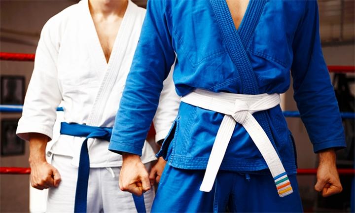 4 x Jiu Jitsu Classes at Bushindo Jiujitsu