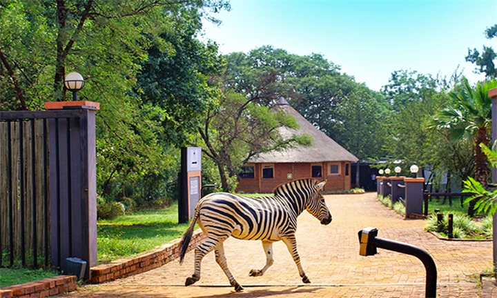 Pretoria: 1 or 2-Night Weekday or Anytime Stay for Two at Malibu Country Lodge