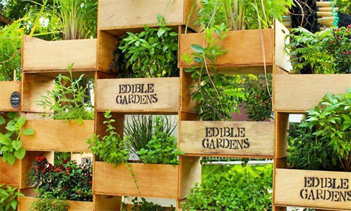 Herb Gardening & Application Course for One or Two at Good Thyme Living