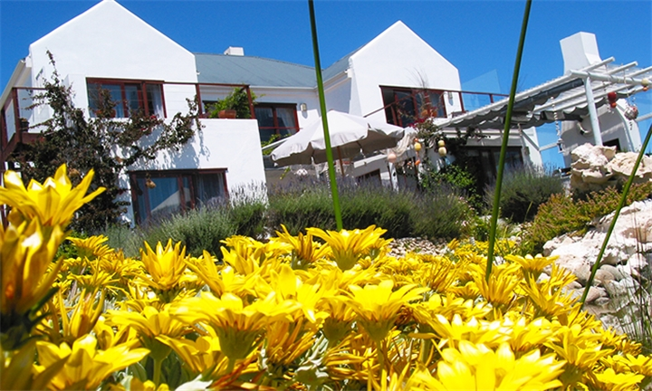 Western Cape: 1 or 2-Night Weekday Stay for Two Including Optional Breakfast at Farr Out Guesthouse