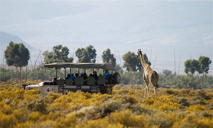 Western Cape: 1-Night Stay including Meals and Safaris for Two at Inverdoorn Game Reserve