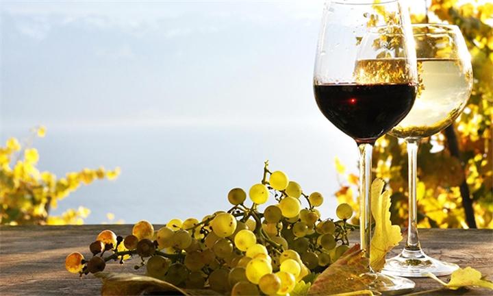 Online Cape Wine Ambassador Course with Hidden Gems