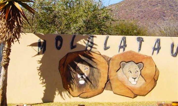 Limpopo: 1 or 2-Night Anytime Stay for Four at Molalatau Lodge