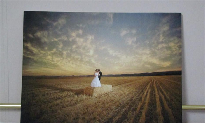 Variety Stretched Canvas Prints at Wild Art Printing