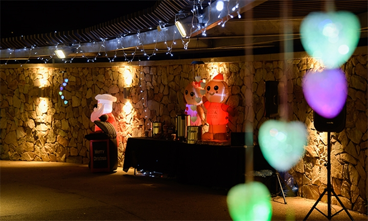 Entry for Two to the Wonderland of Lights with Event Ladies SA