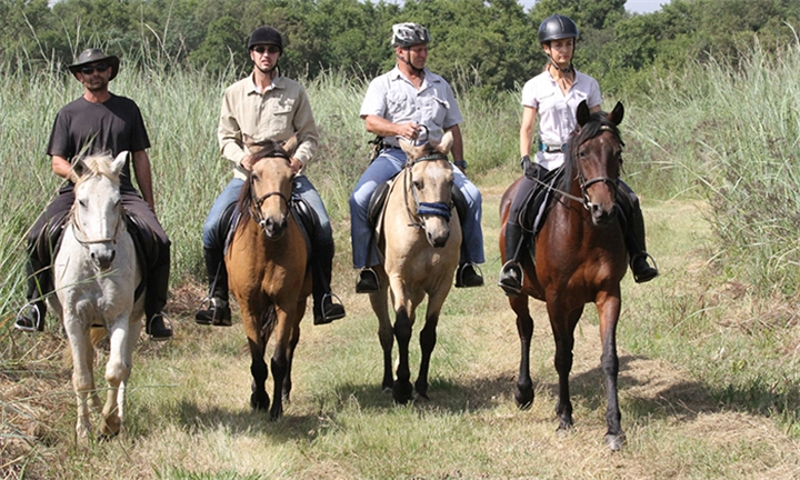 1-Hour Horseback Outride Including Refreshment each for Two at Hazeldean Valley Trails