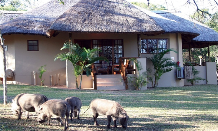 KwaZulu-Natal: 1 or 2-Night Anytime Stay for Two Including Breakfast at Bonamanzi Game Reserve