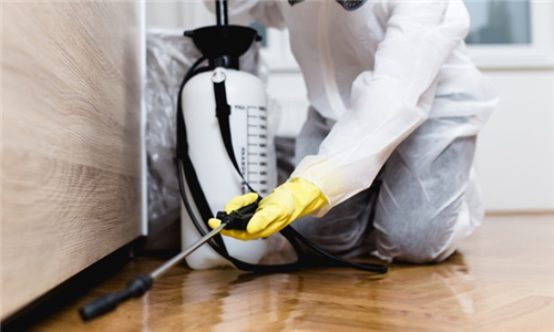 Pest Control Services for 1, 2, 3 or 4 Bedroom Cottages, Apartments, Townhouse or Homes from R and R Pest Control
