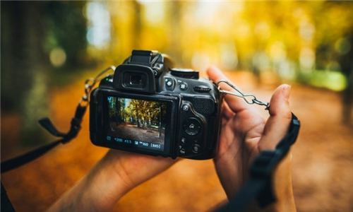 Online Digital Photography Diploma Course with Centre Of Excellence