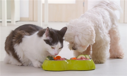 Micronutrient Analysis for your Pet