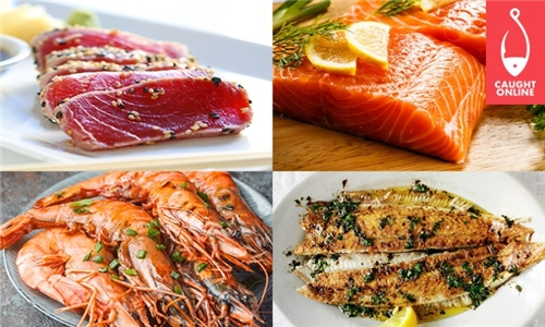 Caught Online Best Seller Box: Prawns, Soles, Salmon Portions & Sashimi Tuna Including Delivery