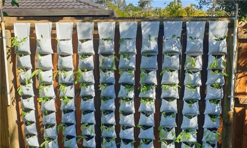Agri Urb Grow Kits Delivered to your Door – Grow your Own Vertical Veg Patch at Home