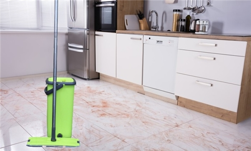 Floormax Wonder Mop Including Delivery