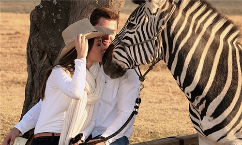 Interactions and Photos with Zebras for Kids or Adults from Lila's Zebra Safaris