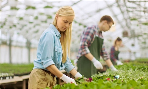 Online Course: Horticultural Worker Course