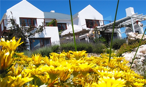 Western Cape: 1-Night Stay for Two at Farr Out Guesthouse
