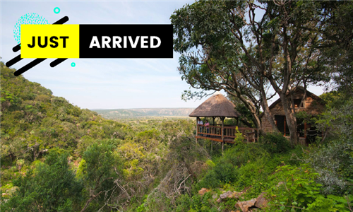 Eastern Cape: 1 or 2-Night Anytime Stay for Two Including Game Drive and All Meals at Woodbury Tented Camp, Amakhala Game Reserve