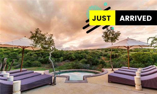 Eastern Cape: 1 or 2-Night Anytime Stay for Two Including Game Drives and All Meals from Safari Lodge, Amakhala Game Reserve
