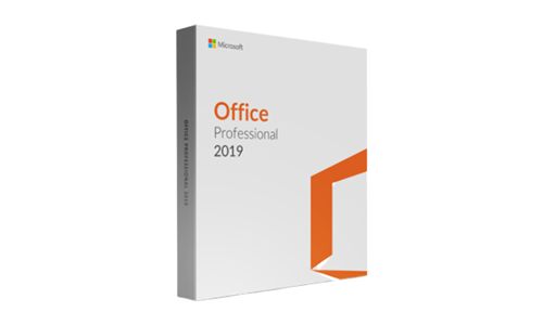 Microsoft Office 2019 Professional with E-courses4you