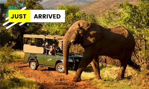 North West: 1 or 2-Night Stay for Two Including Breakfast & Dinner at Kwa Maritane Bush Lodge, Pilanesburg