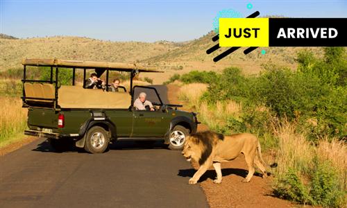 North West: 1-Night All-Inclusive Safari Stay for Two at Tshukudu Bush Lodge