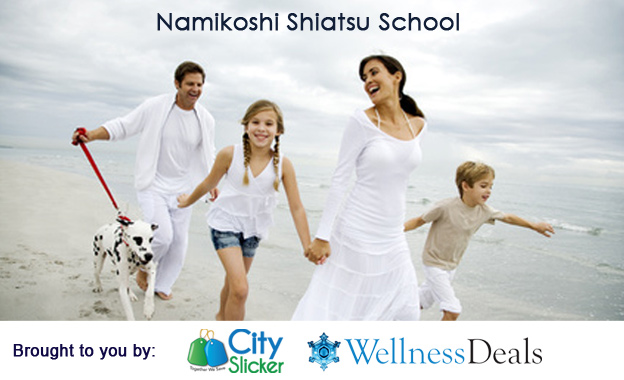 Pay R249 instead of R500 for a 1-Day D.I.Y Stress Relief Toolkit (Shiatsu) at Namikoshi Shiatsu School