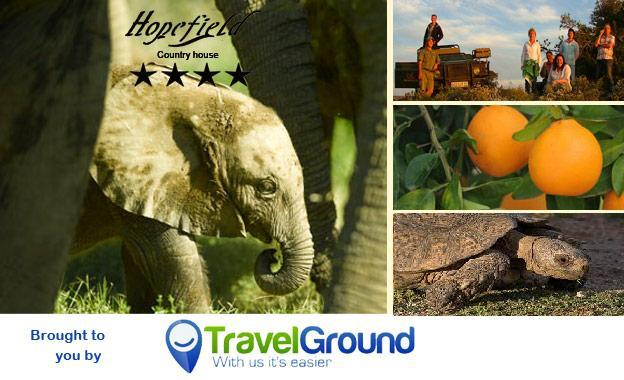 4-star escape to Hopefield Country House in Addo for only R495 per couple per night, including breakfast (value R990)