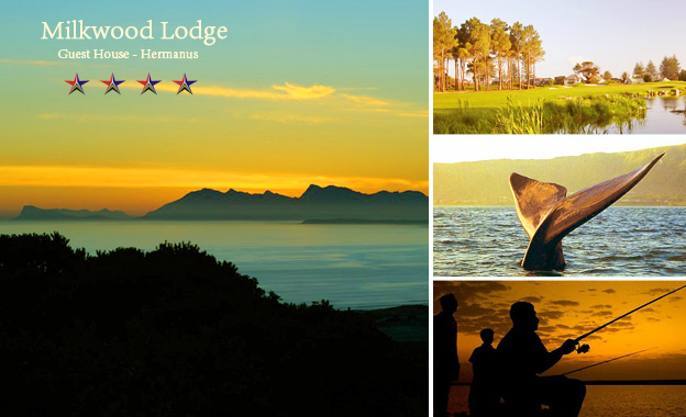 4-star Whale-town getaway for 2! Pay 550 per night or R950 per 2-night, including breakfast at Milkwood Lodge