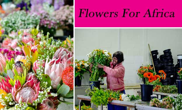 Spoil someone special with a beautiful bunch of spring flowers for R99 from Flowers for Africa (value R200)