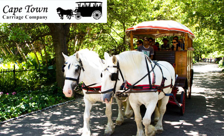 Enjoy a 90-minute Mother City horse and carriage historic tour for only R99 (value R200)
