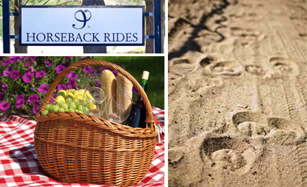 90-min horse outride for 2! R249 for an outride OR R499 for an outride and picnic with Journey's End Horseback, Somerset West