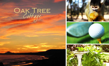 Getaway for 2 to the serene garden setting of Oak Tree Cottage in Port Elizabeth for R399 per night including breakfast