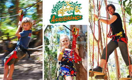 Traverse tricky treetops and challenge your fears with Acrobranch in Centurion from R109 for 2 people, 130m zipline included