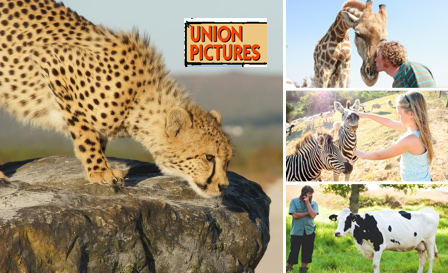 Revel in a Wildlife experience and encounter for 2 adults (R245) or 2 adults & 2kids (R375) at Cornellskop Farm, Botriver
