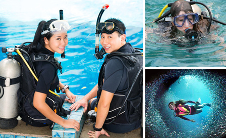 Experience scuba diving with PADI certified courses at Scubalicious in Fourways, starting from R99 + BONUS