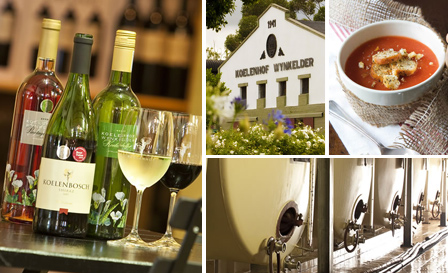 Biltong or butternut soup, home-baked bread and a 5-wine tasting from R79 for 2 at Ella's Bistro, Stellenbosch (save up to 50%)